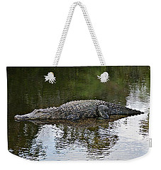 Alligator 1 Weekender Tote Bag by Joe Faherty