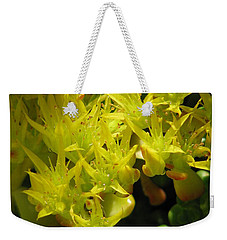 Weekender Tote Bag featuring the photograph Almost Undersea by Rory Sagner