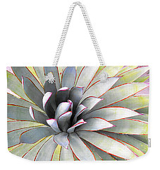 Weekender Tote Bag featuring the photograph Aloe by Rebecca Margraf