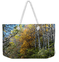 Weekender Tote Bag featuring the photograph Along The Back Road by Vicki Pelham
