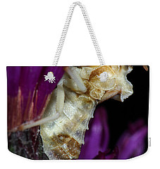 Weekender Tote Bag featuring the photograph Ambush Bug On Ironweed by Daniel Reed