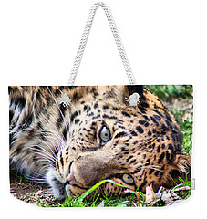 Weekender Tote Bag featuring the photograph Amur Leopard by Lynne Jenkins