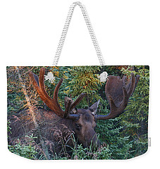 Weekender Tote Bag featuring the photograph An Eye On You by Doug Lloyd
