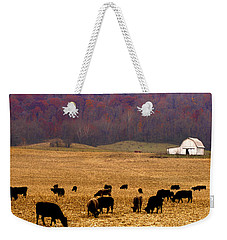 Weekender Tote Bag featuring the photograph Angus And Oaks  Farm by Randall Branham