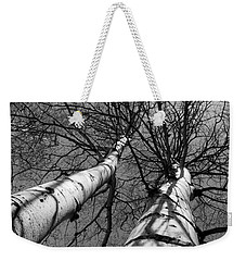 Weekender Tote Bag featuring the photograph Aspen Glow by Colleen Coccia