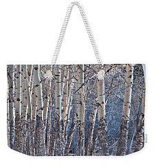 Weekender Tote Bag featuring the photograph Aspen Grove by Colleen Coccia