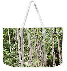 Aspens And Red Berries Weekender Tote Bag