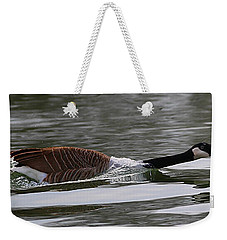 Weekender Tote Bag featuring the photograph Attack Of The Canadian Geese by Elizabeth Winter