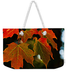 Autumn Glory Weekender Tote Bag by Cheryl Baxter