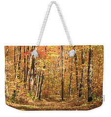 Weekender Tote Bag featuring the photograph Autumn In Minnesota by Penny Meyers