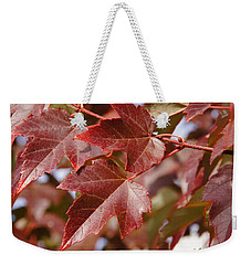 Weekender Tote Bag featuring the photograph Autumn In My Back Yard by Mick Anderson