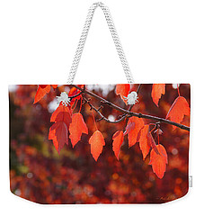 Weekender Tote Bag featuring the photograph Autumn Leaves In Medford by Mick Anderson
