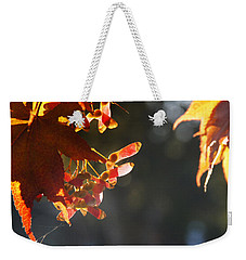 Weekender Tote Bag featuring the photograph Autumn Maple by Mick Anderson
