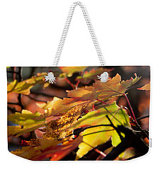 Autumn Morning Weekender Tote Bag by David Troxel