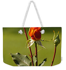 Weekender Tote Bag featuring the photograph Autumn Rose by Mick Anderson