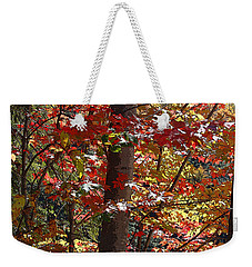 Autumn's Delight Weekender Tote Bag