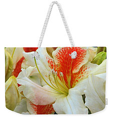 Weekender Tote Bag featuring the photograph Azaleodendron Glory Of Littleworth by Chris Anderson