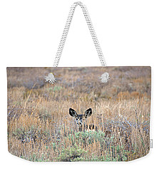 Weekender Tote Bag featuring the photograph Babe In Hiding by Lynn Bauer