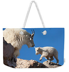 Weekender Tote Bag featuring the photograph Baby Steps by Jim Garrison