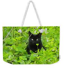 Backyard Black Cat Weekender Tote Bag