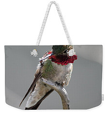 Weekender Tote Bag featuring the photograph Balancing Act by Shane Bechler