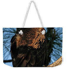 Bald Eagle At The Cape Weekender Tote Bag