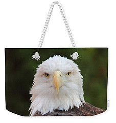 Weekender Tote Bag featuring the photograph Bald Eagle by Coby Cooper