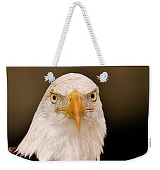 Bald Eagle Looking In Weekender Tote Bag