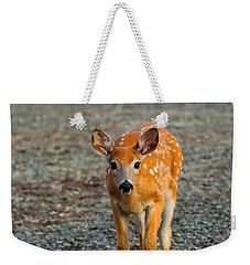 Bambi Weekender Tote Bag by Sebastian Musial