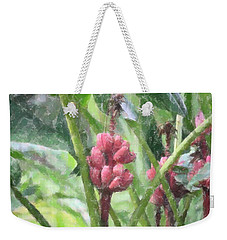 Weekender Tote Bag featuring the photograph Banana Plant by Donna  Smith