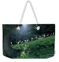 Weekender Tote Bag featuring the photograph Bear-grass Ridge by Sharon Elliott