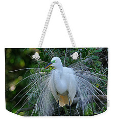 Beautiful Feathers Weekender Tote Bag
