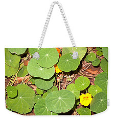 Beautiful Round Green Leaves Of A Plant With Orange Flowers Weekender Tote Bag