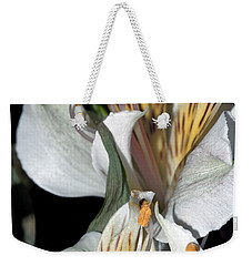 Weekender Tote Bag featuring the photograph Beauty Untold by Tikvah's Hope