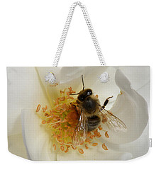 Weekender Tote Bag featuring the photograph Bee In A White Rose by Lainie Wrightson