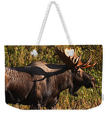 Weekender Tote Bag featuring the photograph Big Bull by Doug Lloyd