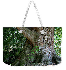 Big Fat Tree Trunk Weekender Tote Bag