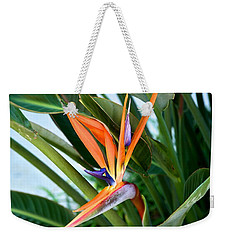 Weekender Tote Bag featuring the photograph Bird by Joseph Yarbrough