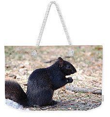 Weekender Tote Bag featuring the photograph Black Squirrel Of Central Park by Sarah McKoy