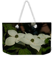 Weekender Tote Bag featuring the photograph Blanket by Joseph Yarbrough