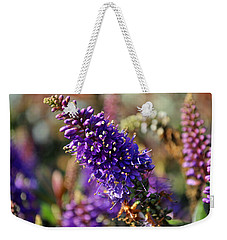 Weekender Tote Bag featuring the photograph Blue Brush Bloom by Tikvah's Hope