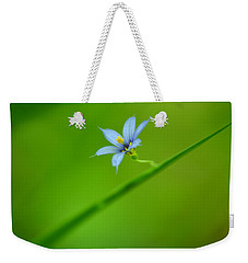 Weekender Tote Bag featuring the photograph Blue-eyed Grass by JD Grimes