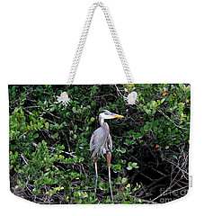 Weekender Tote Bag featuring the photograph Blue Heron In Tree by Dan Friend