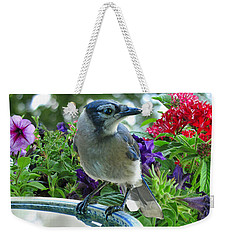 Weekender Tote Bag featuring the photograph Blue Jay At Water by Debbie Portwood