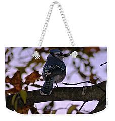 Blue Jay Weekender Tote Bag by Joe Faherty