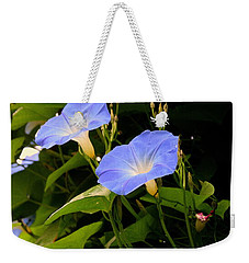 Weekender Tote Bag featuring the photograph Blue Morning Glories by Kay Novy