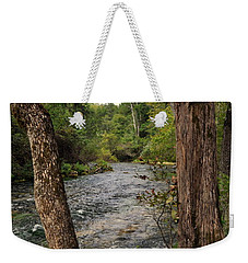 Weekender Tote Bag featuring the photograph Blue Spring Branch by Marty Koch