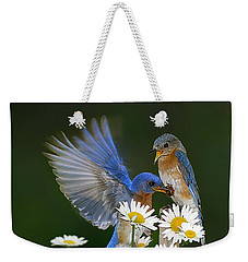 Weekender Tote Bag featuring the photograph Bluebirds Picnicking In The Daisies by Randall Branham