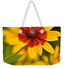Weekender Tote Bag featuring the photograph Blush-eyed Susan by JD Grimes