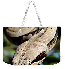 Boa Constrictor Boa Constrictor Weekender Tote Bag by Claus Meyer